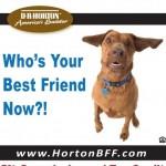 DR Horton 5% Commission