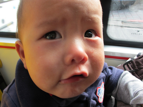 crying baby 2013 Housing Market: Crying Buyers, Cheering Sellers